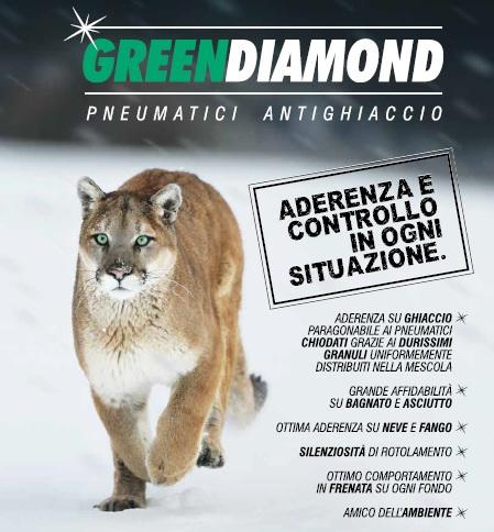 Green Diamond - Pneumatici antighiaccio